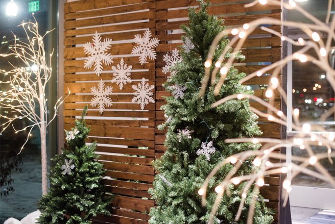 Christmas tress next to a wooden backdrop
