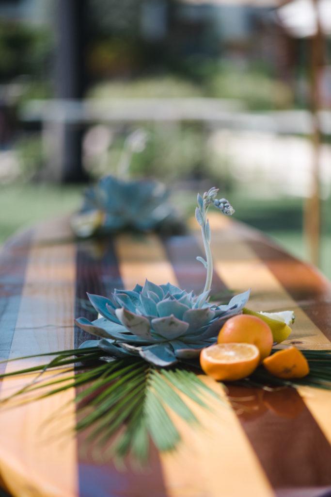 Succulents and oranges